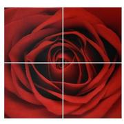 Vermelho Set of 4 Acrylic Wall Art  main image, 1 of 4 images.