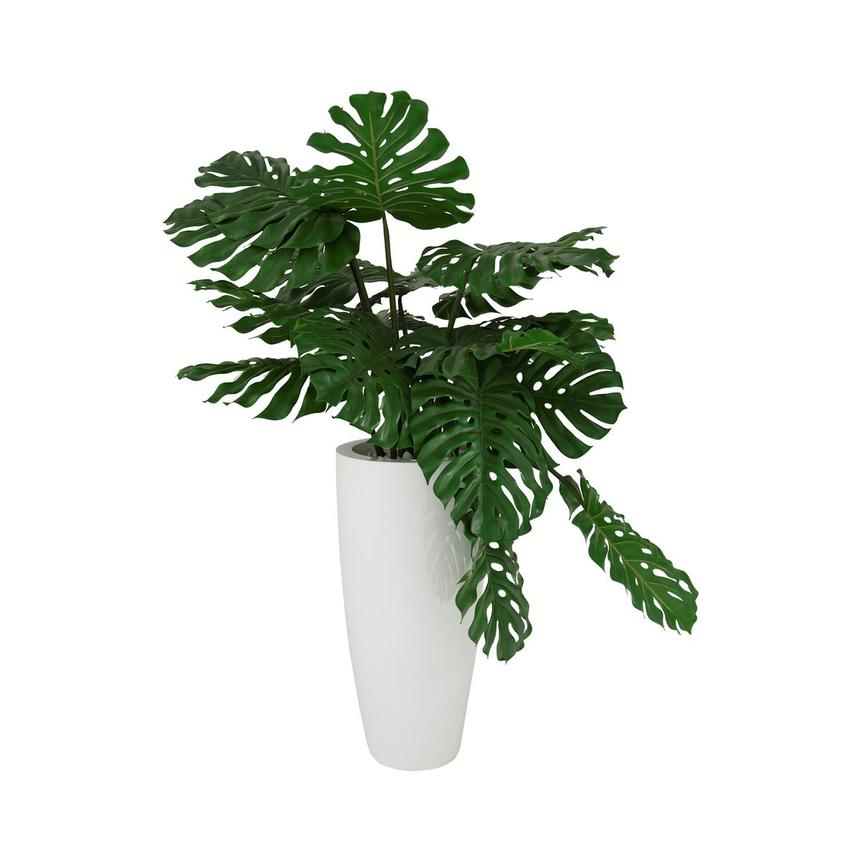 Monstera White Planter  main image, 1 of 4 images.