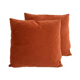 Andy Orange Two Accent Pillows