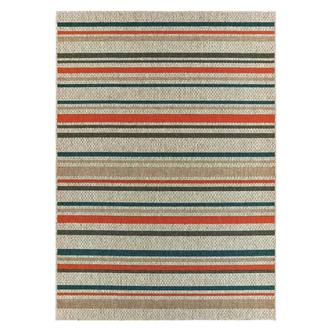 Indy 8' x 10' Indoor/Outdoor Area Rug