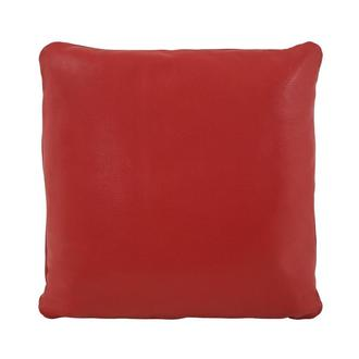 Cute Red Accent Pillow