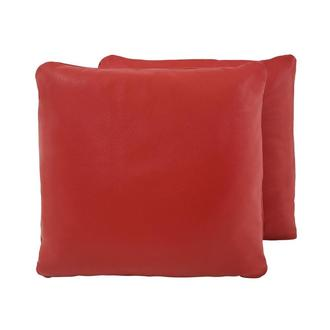 Cute Red Two Accent Pillows
